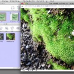 Mac用写真・動画管理ソフト「LEAFO」バージョンアップ