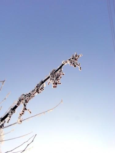 冬の晴れた日の朝