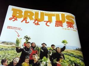 雑誌『ブルータス』の表紙