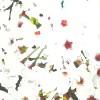 mu-anで「春祭り」展(2月23日 – 3月10日)