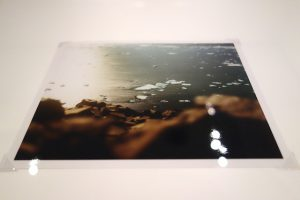新潟市美術館の石川直樹展での展示プリント
