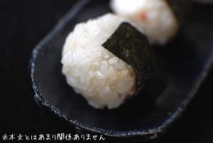 じゅんかん米で作った、おにぎりイメージ