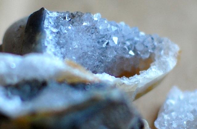 化石から見つかった結晶