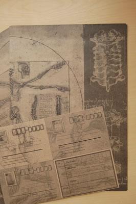 コチコチさんセレクトの人体モチーフのレターセット