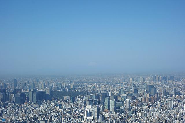 スカイツリーから観た富士山
