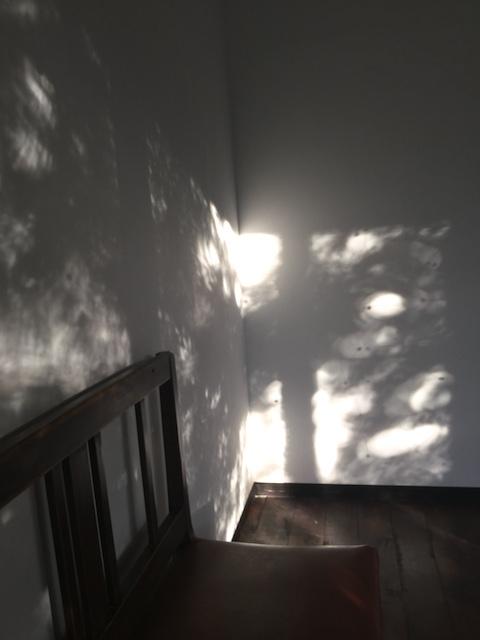 サトウカヨ展「佇む」会場で観た影