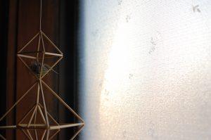 窓ガラス越しの夕焼け