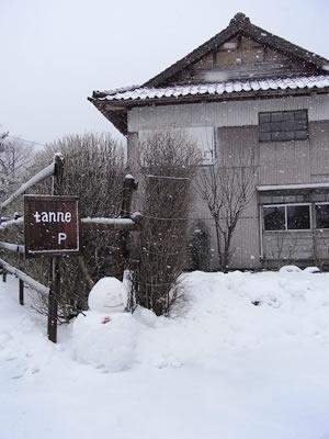 雪のtanne