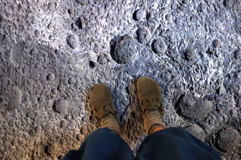 谷川俊太郎展の「二十億光年の孤独」展示空間の床面
