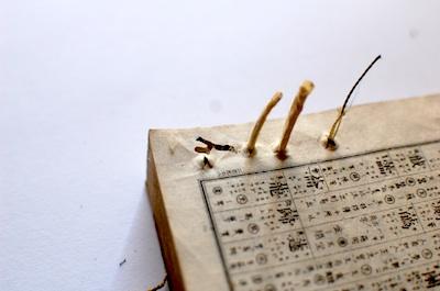 和綴じ本の古本に虫喰い