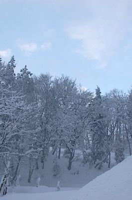 雪の中の晴れ間